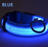 The LED NIGHT SAFE WALKER - Bright LED Light Dog Collar - Thirsty Buyer - 2
