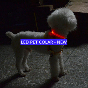 The LED NIGHT SAFE WALKER - Bright LED Light Dog Collar - Thirsty Buyer - 1