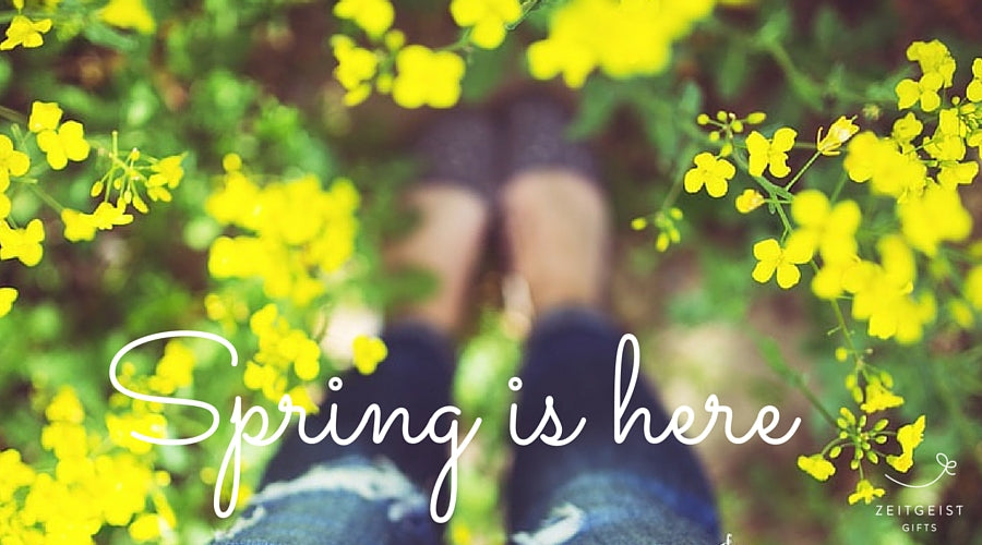spring ready, spring cleaning, spring decorating, spring decor