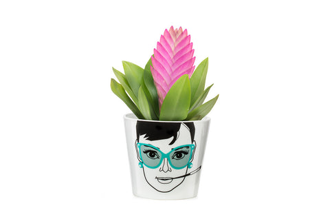 Flower Pot Small - Elegant Audrey