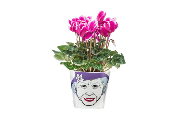 Flower Pot Small - Queen - Zeitgeist Gifts