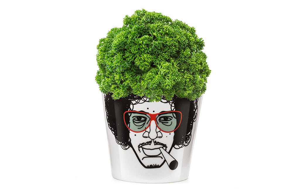 Herbal Jimi Flower Pot Small
