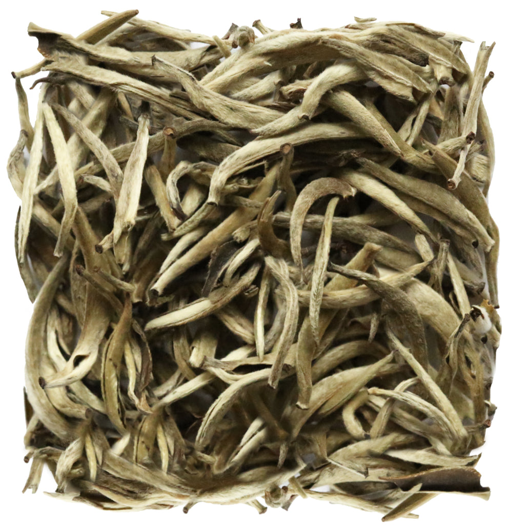 SILVER NEEDLE - Tea Lab