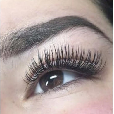 Ellipse or Cashmere Lash Extensions - Only $130 for Junior Artist
