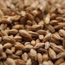 Chateau Monastique Malt Also Known as Aromatic or Abbey