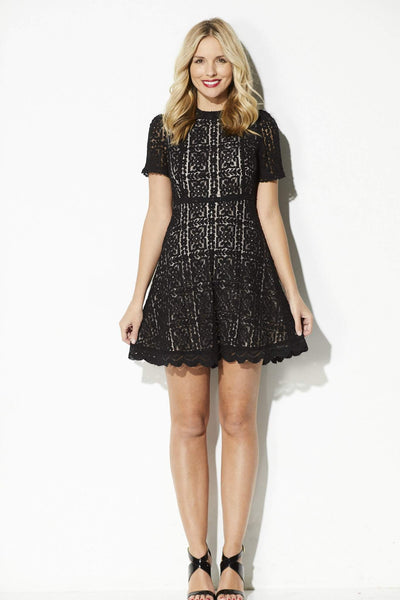 BB Dakota - Lace Overlay Fit and Flare Dress - front