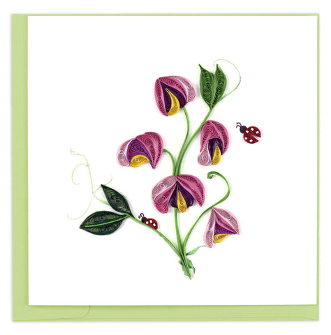 Quilled Sweet Pea Card