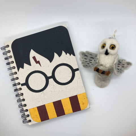 Harry Potter Gift Package