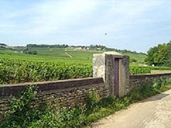 Givry in the Cote Chalonnaise sub-region of Burgundy