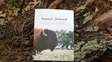 Introducing the 2018 Impact Journal