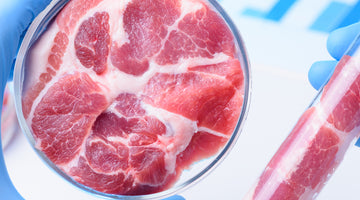 Lab-Grown Meat is Not the Answer