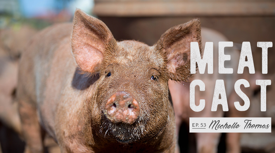 "Photo of a pig with text ""Meacast episode 53 Michelle Thomas"""