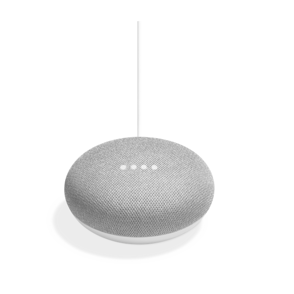 Google Home Mini Gift