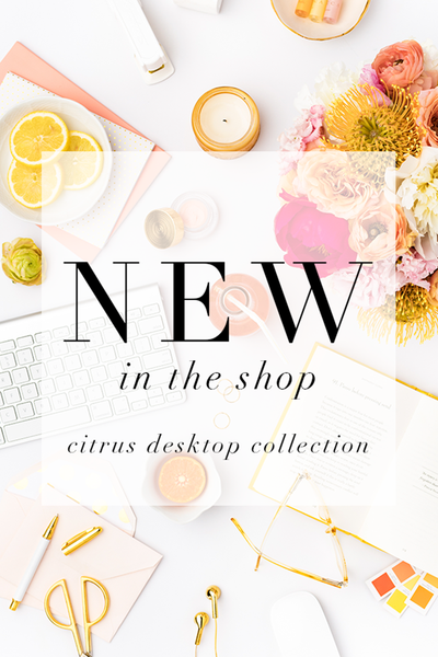 New in the shop: Citrus Inspired Styled Stock Desktop