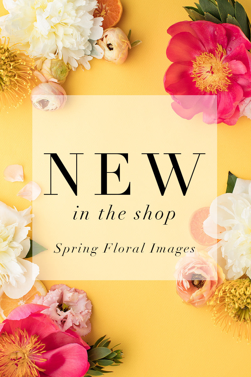 Spring Has Sprung: Citrus Floral Styled Stock Photography