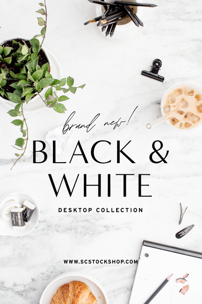 New in the shop: The black & white styled stock of your dreams