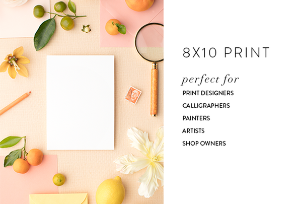 print styled stock for print designers