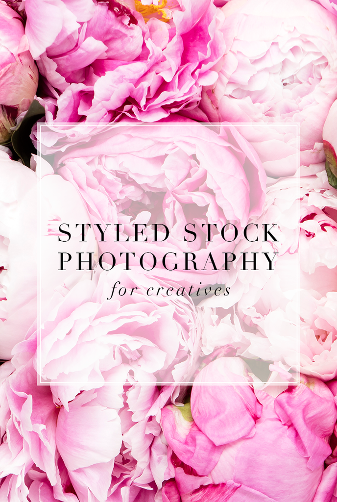Styled pink peony stock image for creatives.