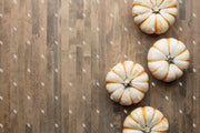 Styled Stock Photography Fall Pumpkin Set