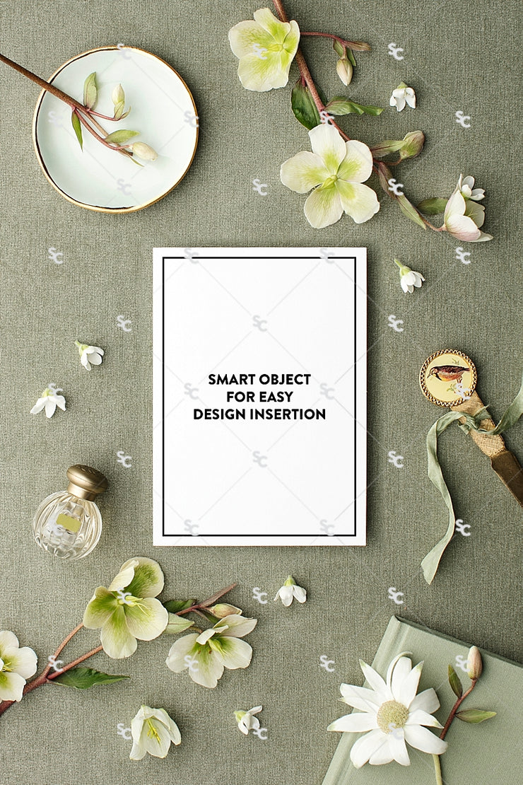 MaeMae x SC Collection: Sage SET 3 | A7 Stationery