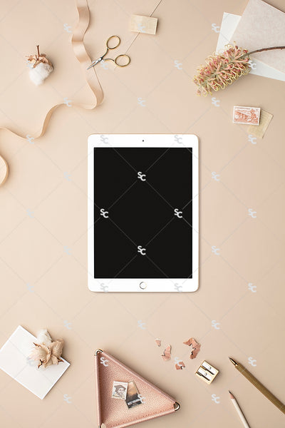 MaeMae x SC Collection: Nude SET 5 | Tablet Screen