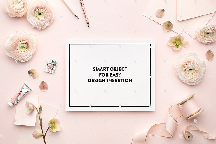 MaeMae x SC Collection: Blush Pink SET 2 | 8x10 Prints