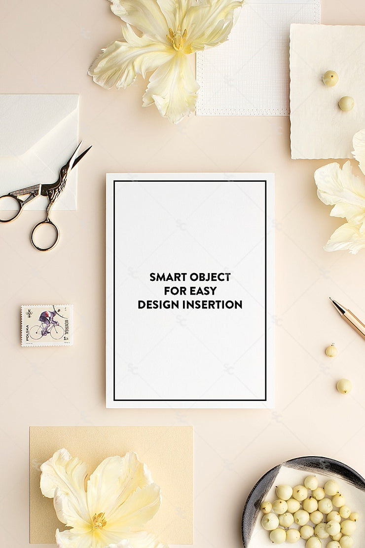 MaeMae x SC Collection: Buttercream SET 7 | A7 Stationery