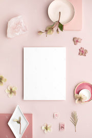 dusty rose stationery styled stock with blank 8x10 print