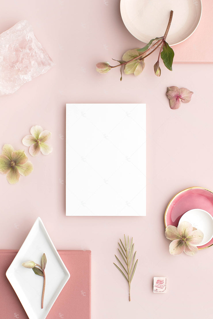 MaeMae x SC Collection: Dusty Rose SET 7 | A7 Stationery