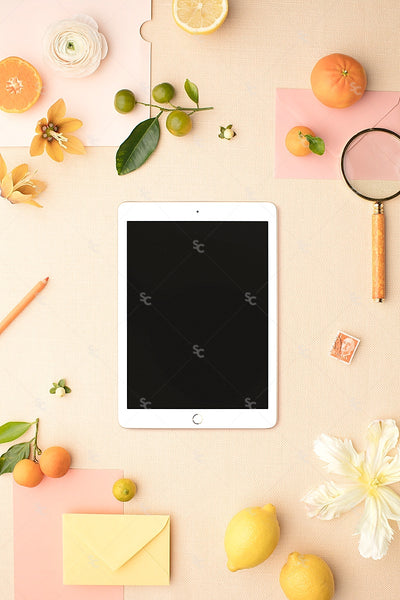 MaeMae x SC Collection: Citrus SET 5 | Tablet Screen