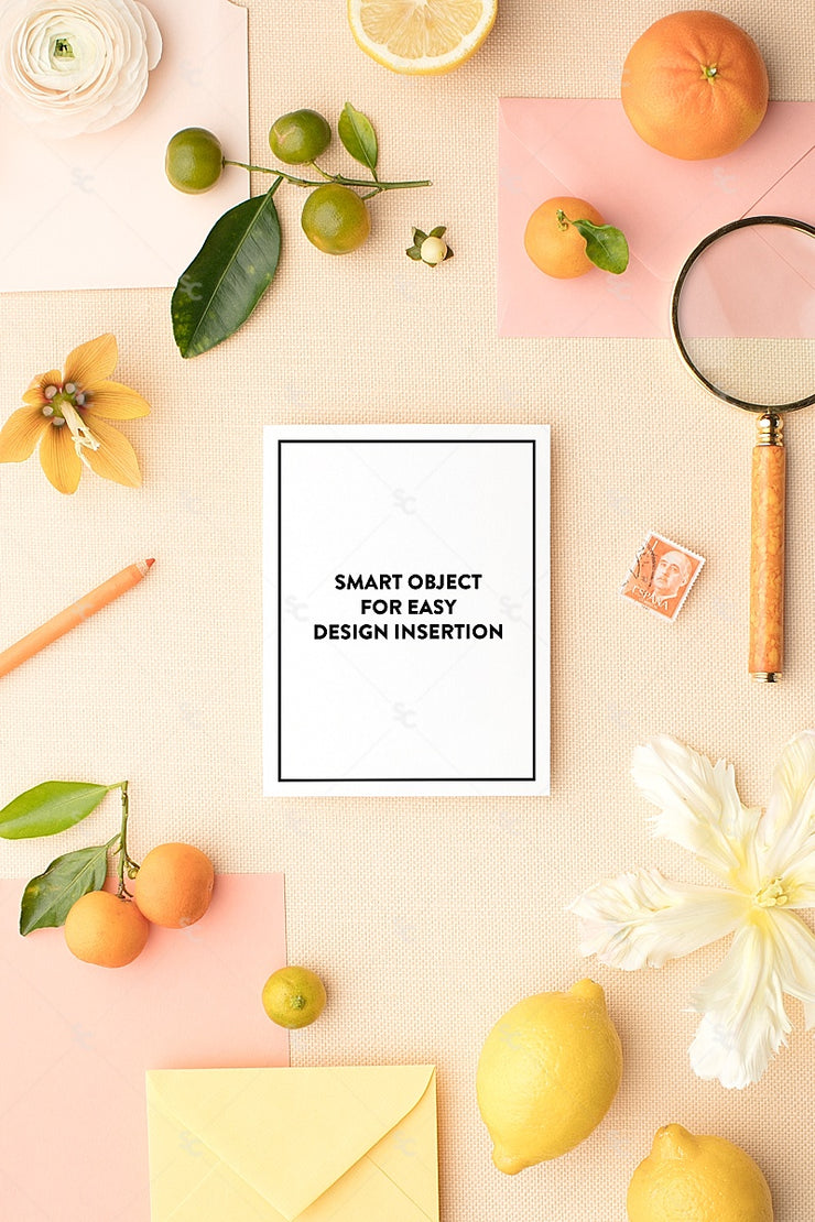 MaeMae x SC Collection: Citrus SET 8 | Notecards