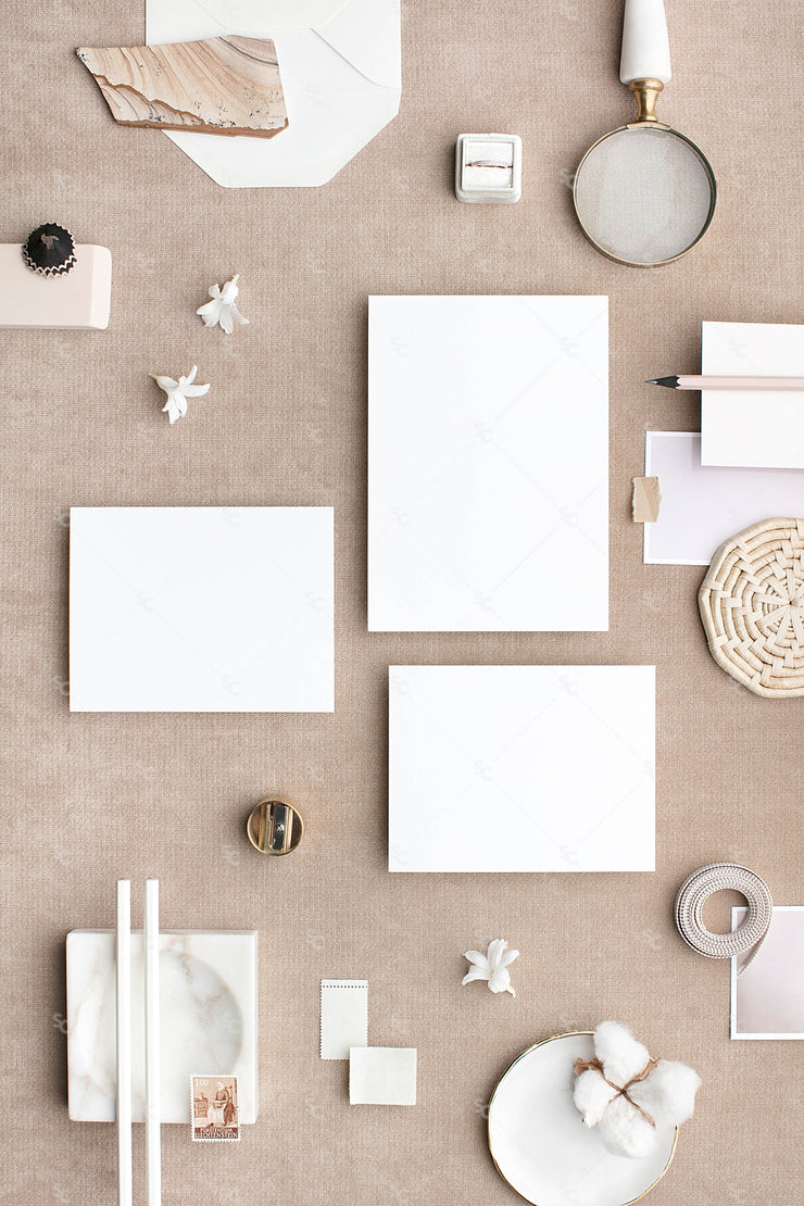 Bone and neutral stationery suite styled stock