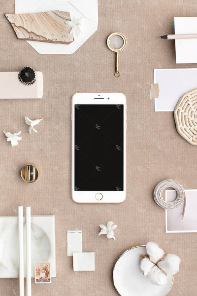 Bone and neutral stationery styled stock with iphone