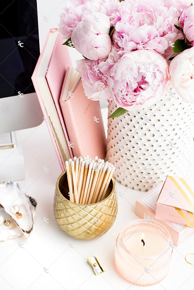 Blush Pink Feminine Styled Stock Photography for Business Owners ...
