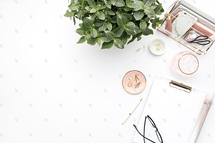 Styled Stock Photography Blush and Greenery Desk Collection2 #16