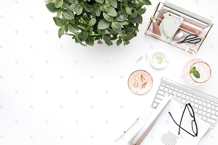 Styled Stock Photography Blush and Greenery Desktop Collection2