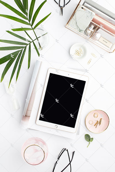 Styled Stock Photography Blush and Palms Desk Collection #11