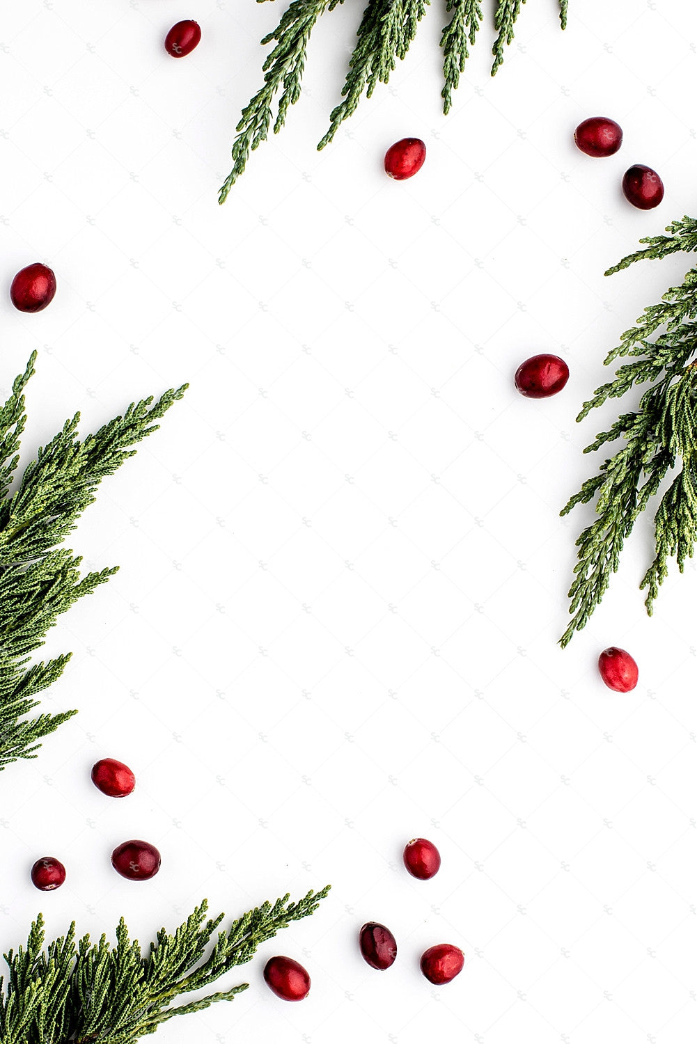 Holiday Styled Stock for Creatives from the SC Stockshop