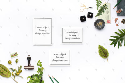 MaeMae x SC Collection: Botanical SET 1