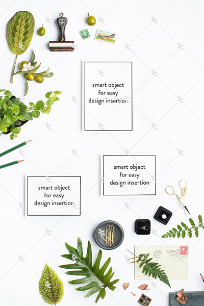 MaeMae x SC Collection: Botanical SET 4