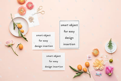 MaeMae x SC Stationery Collection: Peach and Pink SET 1