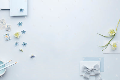 MaeMae x SC Stationery Collection: French Blue #1