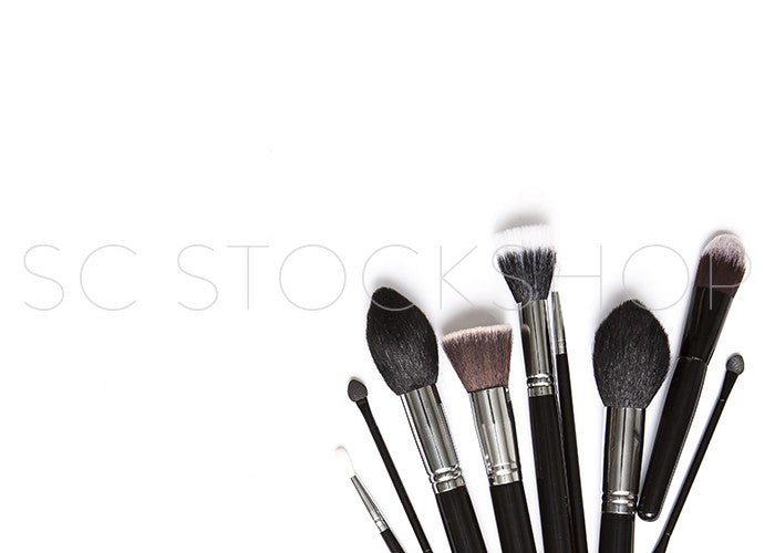 Makeup Brush Collection #10