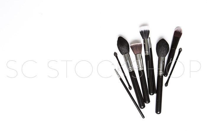 Makeup Brush Collection #04