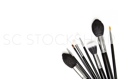 Makeup Brush Collection #07