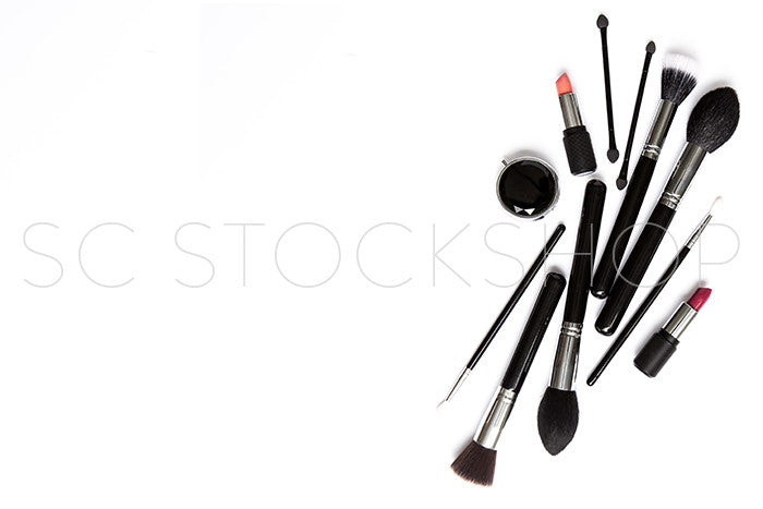 Makeup Brush Collection #09