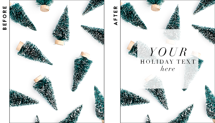 Seasonal Holiday Collection #62