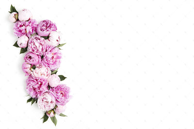 Pink Peonies Collection #04