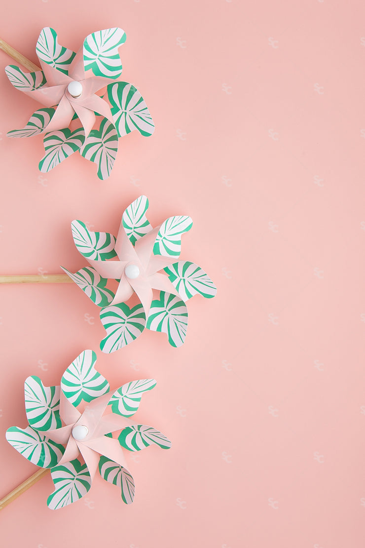 tyled stock image of green pinwheels on a pink background