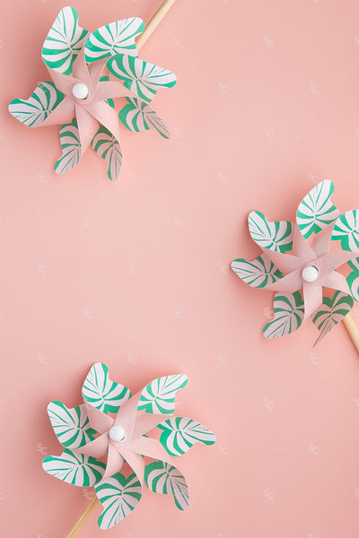styled stock image of green pinwheels on a pink background